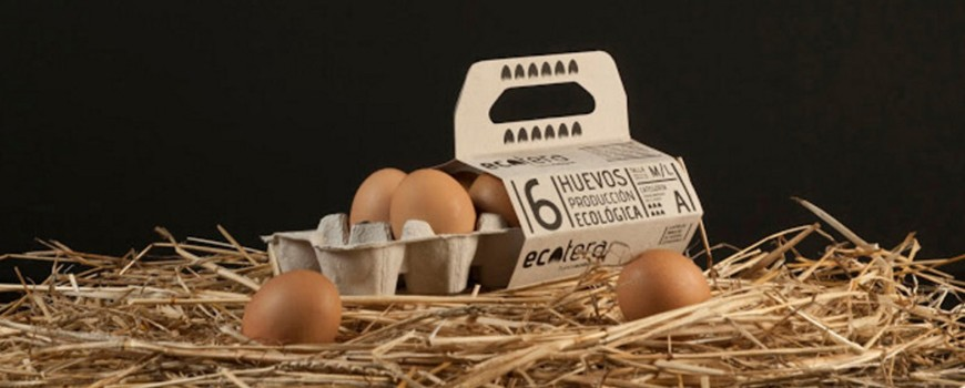 Bao bì sở hữu 100% vật liệu có thể tái chế